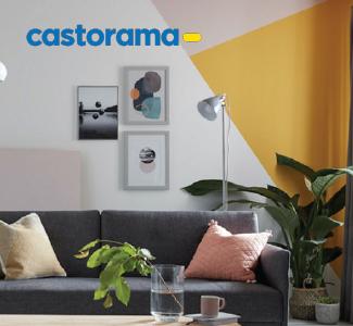 Vignette du répertoire cas client Castorama